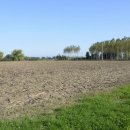 Terreno agricolo in vendita a San Canzian d'Isonzo