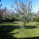 Terreno residenziale in vendita a Fiumicello