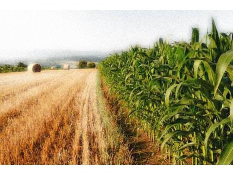 Terreno agricolo in vendita a vimercate - Terreno agricolo in vendita a vimercate