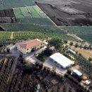 Azienda agricola plurilocale in vendita a Cerreto Guidi