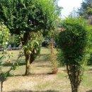 Rustico / casale plurilocale in vendita a teolo