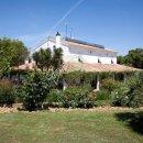 Villa indipendente plurilocale in vendita a Fauglia