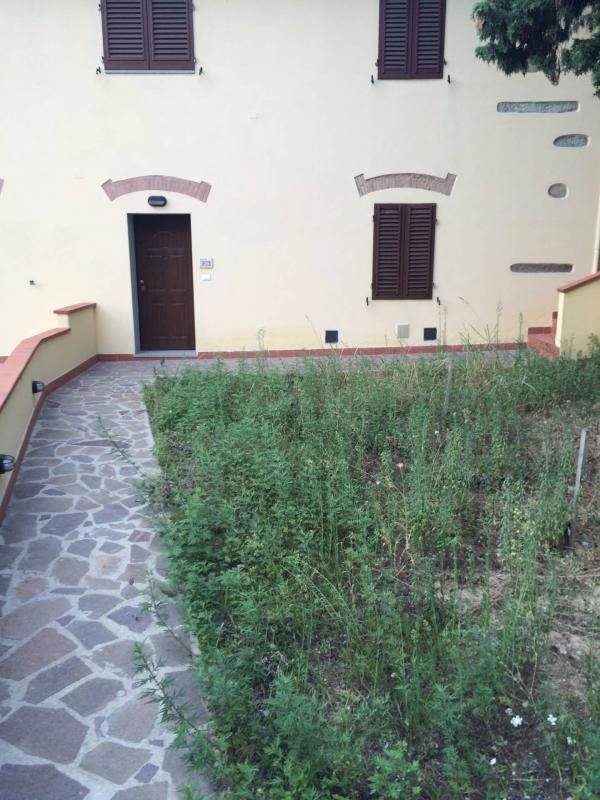 Appartamento bilocale in affitto a Cerreto Guidi - Appartamento bilocale in affitto a Cerreto Guidi