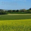 Terreno residenziale in vendita a Sant'Ippolito