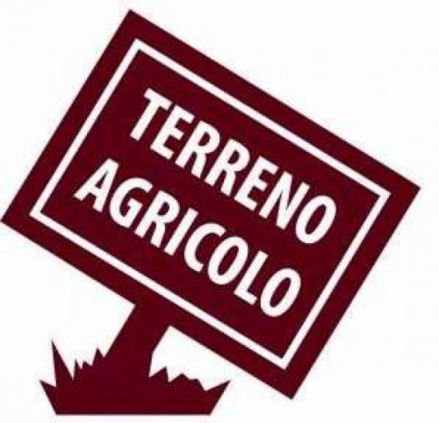Terreno agricolo in vendita a Roveredo in Piano - Terreno agricolo in vendita a Roveredo in Piano