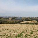 Terreno residenziale in vendita a Controguerra