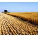 Terreno agricolo in vendita a vimercate