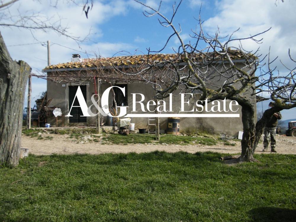 Rustico / casale plurilocale in vendita a Grosseto - Rustico / casale plurilocale in vendita a Grosseto