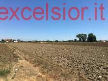 Terreno residenziale in vendita a cavarzere - Terreno residenziale in vendita a cavarzere