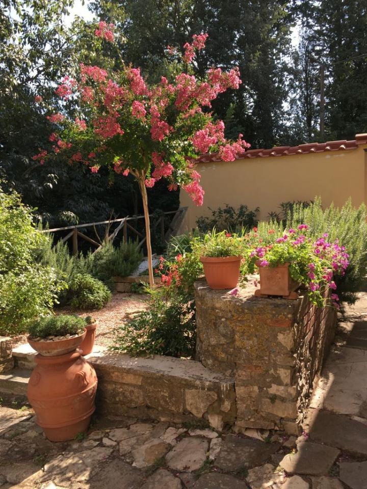 Sieci collinare vendesi casa antica con giardino - Appartamento plurilocale in vendita a Sieci
