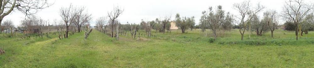 PANORAMA - Casa plurilocale in vendita a La sdriscia