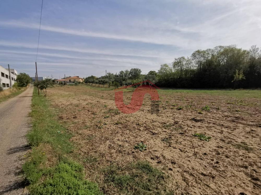 terreno residenziale in vendita a benevento
