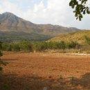Terreno agricolo in vendita a San Pietro Infine
