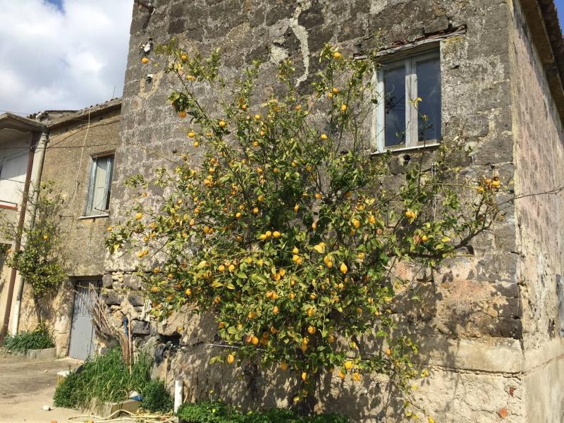 Rustico / casale plurilocale in vendita a Telese Terme - Rustico / casale plurilocale in vendita a Telese Terme