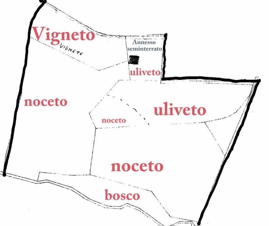 48f90215766440320b6705ad30079482 - Terreno agricolo in vendita a San Gimignano