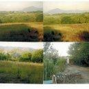 Terreno agricolo in vendita a Carinola
