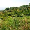 Terreno residenziale in vendita a Cervaro